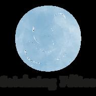 organisatie logo Stichting Félice