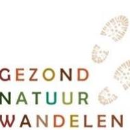 Gezond Natuur Wandelen Haarlem